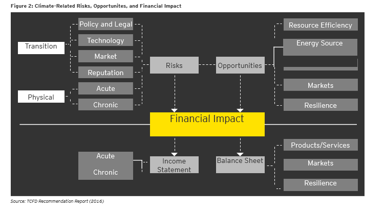 EY - Climate-Related Risks, Opportunities and Financial Impact