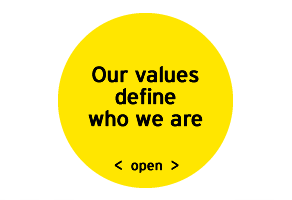 EY - Our values define who we are