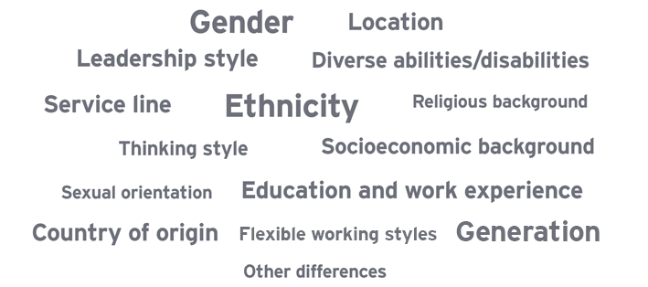 Service line, Location, Leadership style, Sexual orientation, Gender, Ethnicity, Generation, Diverse abilities/disabilities, Socioeconomic background, Country of origin, Other differences, Thinking style, Religious background, Education and work experience