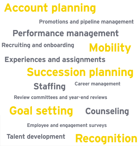 Account planning, Pipeline management, Performance management, Recruiting and on boarding, Succession planning, Mobility, Experiences and assignments, Career management, Roundtables and year-end reviews, Goal setting, Staffing, Recognition, Talent development, Coaching and counselling, Employee or engagement surveys