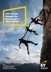 EY - Download the full Productivity report  as a pdf