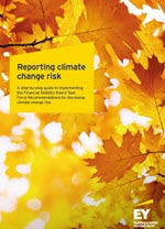 EY - Reporting climate change risks