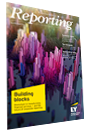 EY Reporting Magazine Issue 12