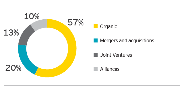 EY - From where do you see growth within your company coming over the next 12 months?