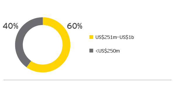 EY - What is your largest planned deal size in the next 12 months?