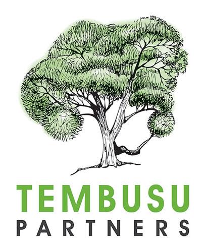 EY - Tembusu Partners