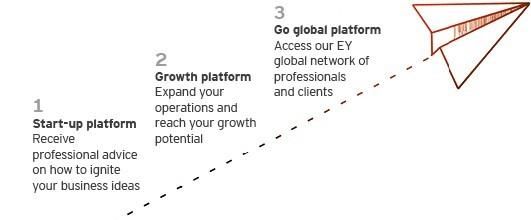 EY - Fast Growth