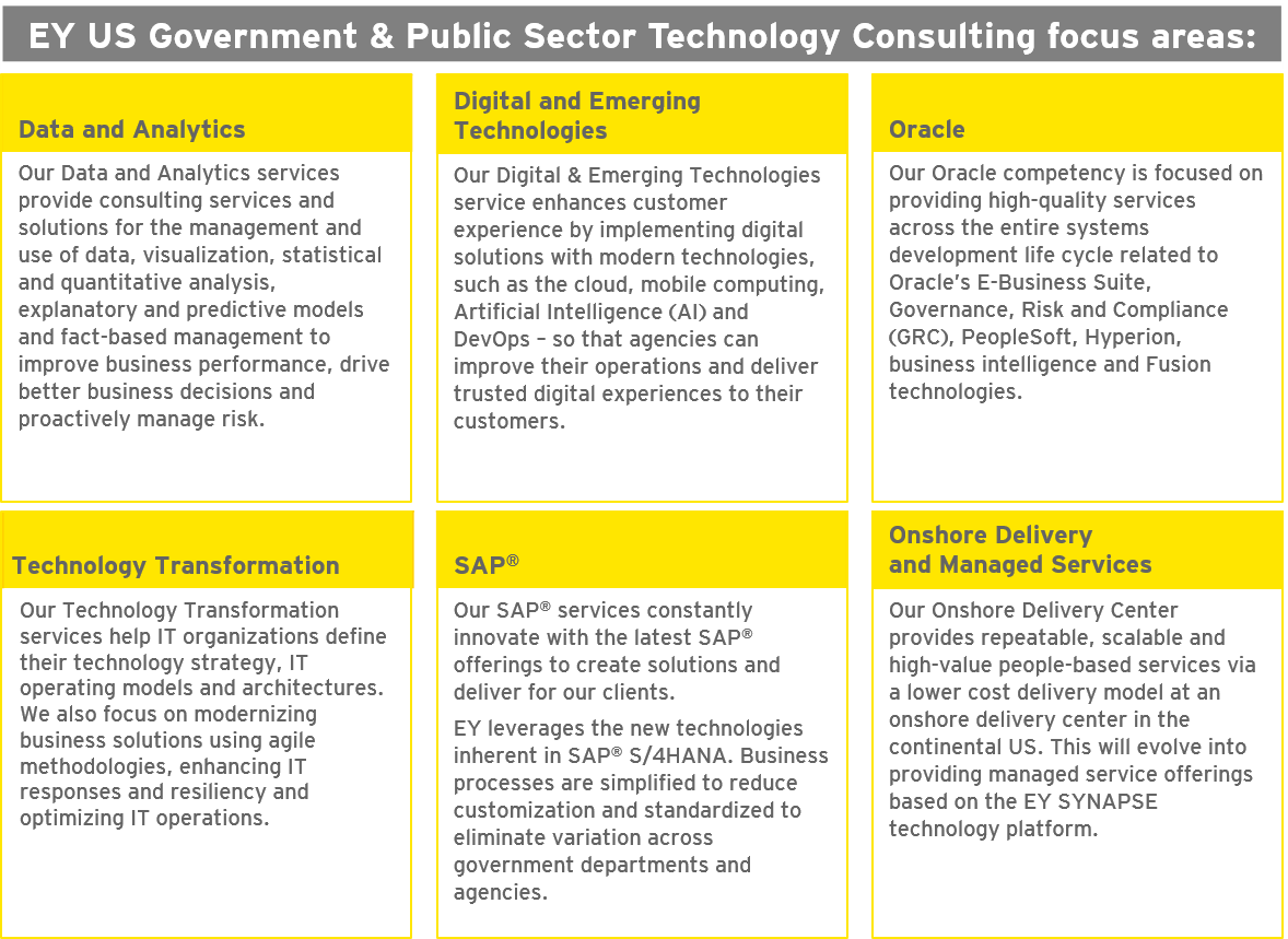 EY US Government & Public Sector Technology Consulting focus areas