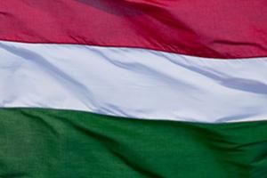 EY - Hungary Winner