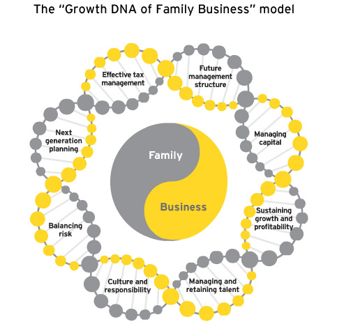 EY-The growth DNA of Family Business model