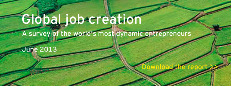 Download the Global job creation survey June 2013
