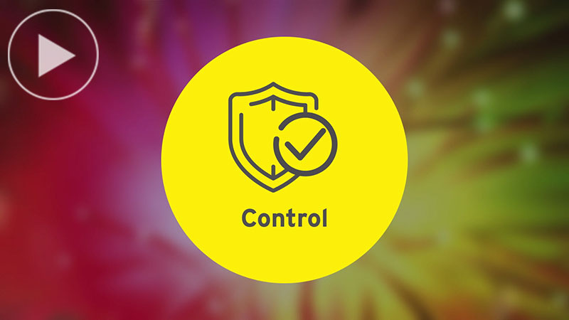 EY - The control agenda