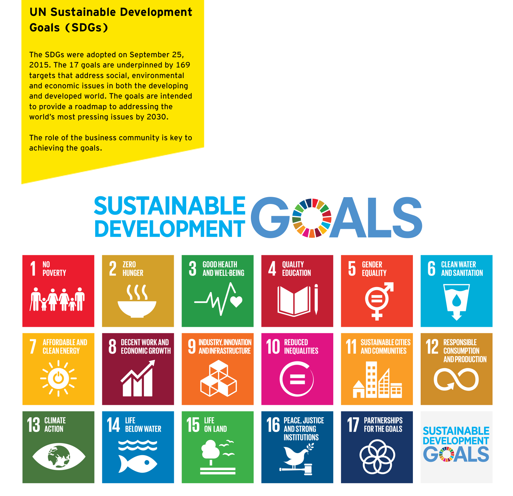 EY - SDG graphic