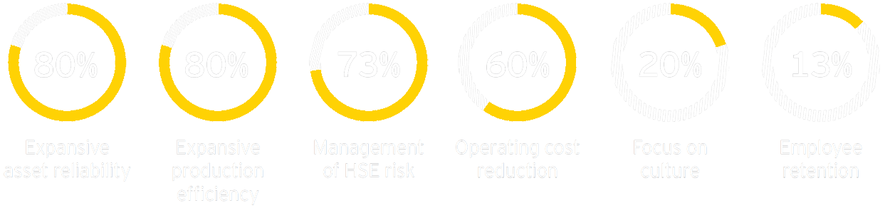 EY - Six most common operational excellence focus areas
