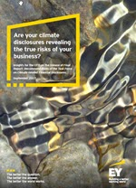 EY - Implications for CFOs