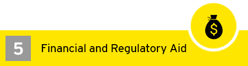 EY - Financial & Regulatory Aid