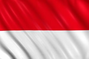 EY - Indonesia Winner