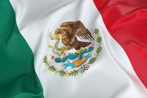 EY - Mexico Winner