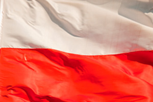 EY - Poland Winner