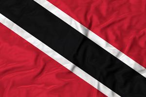 EY - Trinidad and Tobago Winner